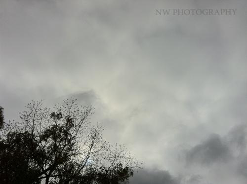 20120804-155324.jpg